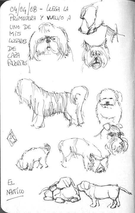 dibujo-perros-tinta