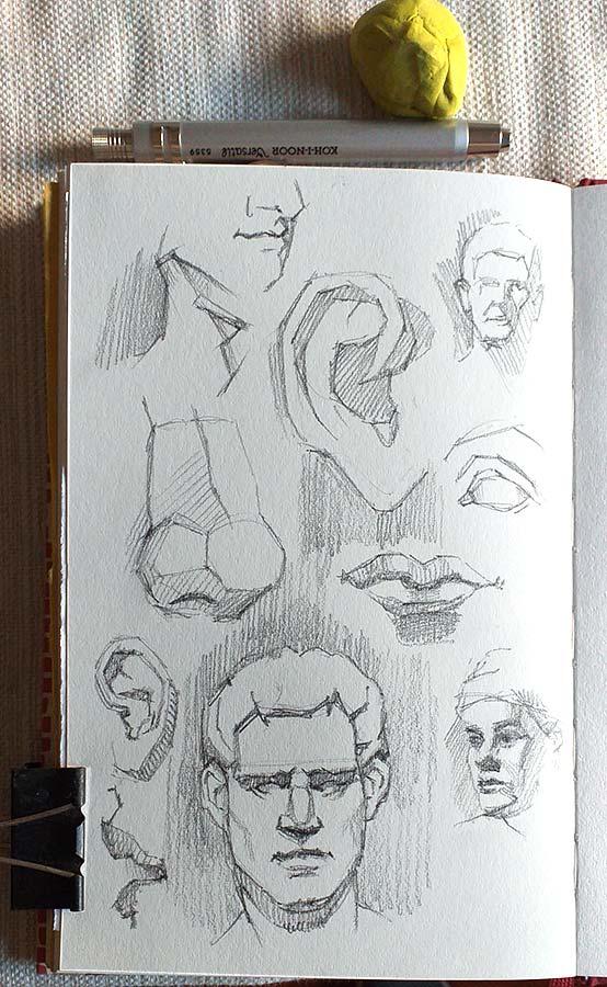 Anatomia Grafito