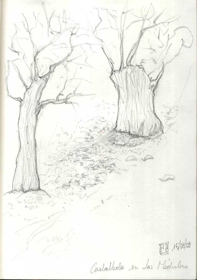 Árbol, grafito