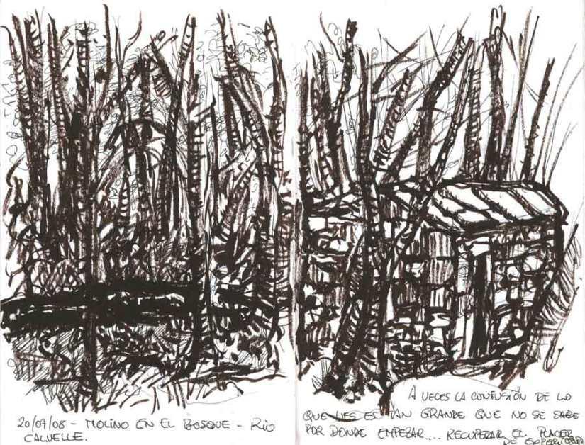 Bosque, tinta pincel
