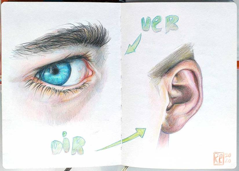 Ojo y oreja, lápices de color