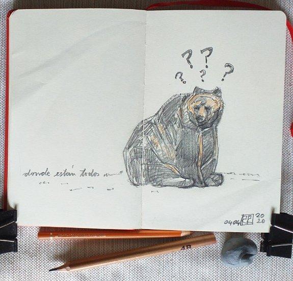Dibujo oso, grafito
